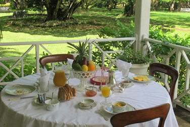 Vous apprécierez le petit déjeuner près du jardin à la Demeure Saint Antoine