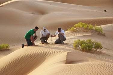 Ou faites le choix d'une excursion dans le désert accompagné d'un guide qui vous parlera de l'histoire et de la faune