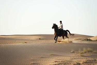 Alors montez à cheval et partez à la découverte du désert