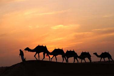 Coucher de soleil sur les dunes du désert, une expérience exceptionnelle