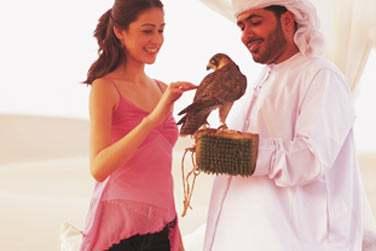 Apprenez à connaître les faucons, animal sacré des Emirats