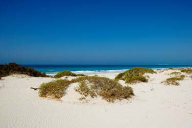 Une plage naturelle et préservée, en raison des tortues qui viennent pondre sur la plage
