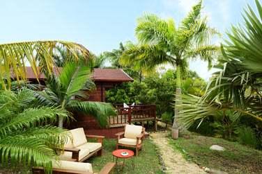 Vue extérieure d'un chalet, enfoui dans la végétation tropicale !