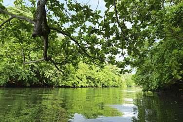 La rivière, un lieu calme et reposant mais également propice aux activités de pleine nature
