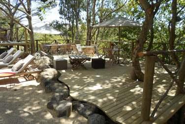 La terrasse près de la piscine est entourée de végétation tropicale