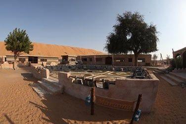 Voici le Arabian Oryx Camp