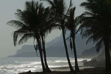 La côte de la région de Salalah est escarpée mais laisse également place à de très belles plages de sable blanc