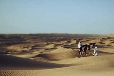 Séjournez au cœur des dunes de sable...