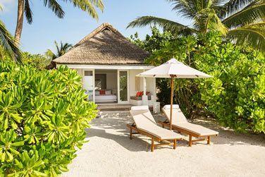 En bord de plage, nichées dans la végétation tropicale !