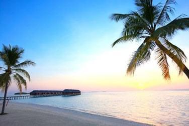 Bienvenue à l'hôtel LUX* South Ari Atoll !