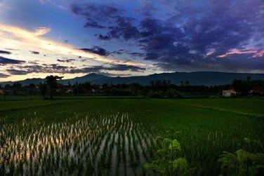 Découvrez toute la beauté du nord de Bali