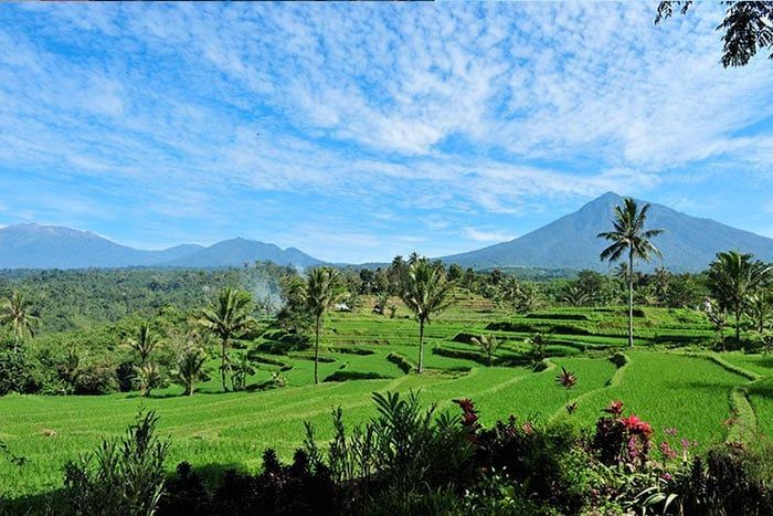 Hôtel Ijen Resort & Villas 4*, Indonésie
