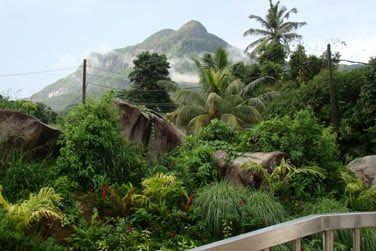 Profitez de cette vue merveilleuse sur la montagne...
