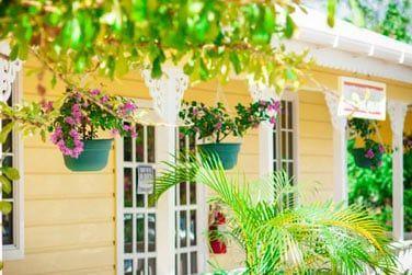 Le patio agrémenté de végétation tropicale..