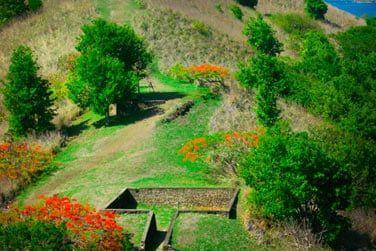 Découvrez quelques-uns des trésors du passé au coeur de cette nature verdoyante..