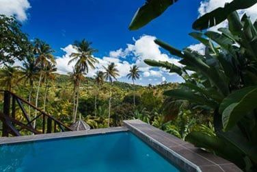 Et une piscine privée ! Idéale pour se détendre en fin de journée...
