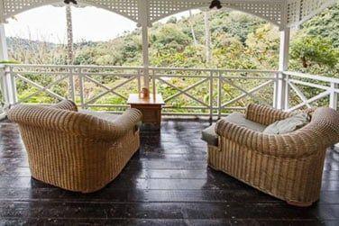 Avec une belle vue sur la végétation tropicale environnante