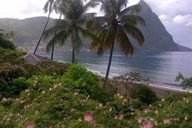 En bord de plage et face aux fameux pitons de Ste Lucie