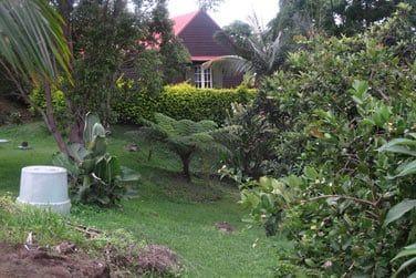 Au coeur d'un beau jardin tropical