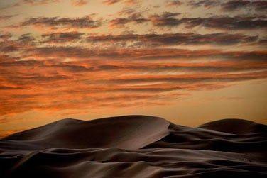 L'hôtel se situe au coeur du désert de Liwa aux magnifiques dunes de sable doré