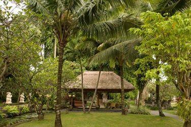 ... Au coeur des jardins tropicaux de l'hôtel.