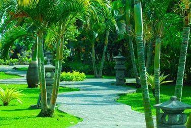 Bienvenue au Adi Assri Beach Resort !