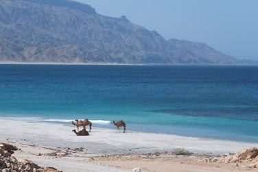 Montagnes abruptes et plages de sable blanc se succèdent
