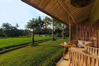 Vue sur les rizières depuis la terrasse...
