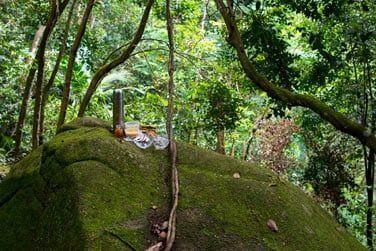 De nombreuses randonnées sont possibles au départ de l'hôtel pour découvrir la nature luxuriante qui l'entoure