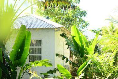 Les cabines de spa sont disséminées dans un très beau jardin tropical