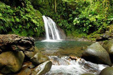 La Guadeloupe vous offre sa nature généreuse...