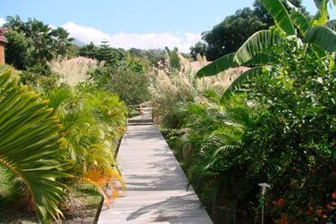 Au coeur de la végétation luxuriante, bienvenue à la Résidence de la Cousinière