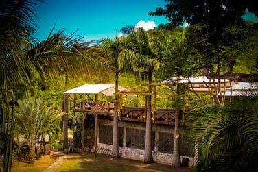 La lotery Farm, refuge de verdure au coeur de l'île