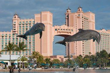 Le Dolphin Cay