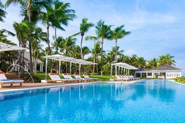 Profitez de la piscine située au coeur des jardins tropicaux