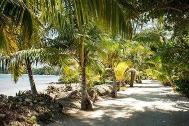 Les cottages sont construits à partir de corail et de pin de l'île Andros
