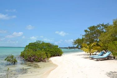 Une plage de sable fin et une nature généreuse vous entourent