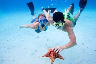 Andros est le paradis des plongeurs grâce à la 3ème plus grande barrière de corail au monde