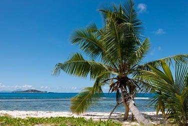 Une plage rien que pour vous !