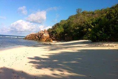 Les plus belles plages de Praslin sont également à proximité