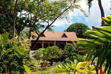 Les jardins sont très luxuriants à l'image de l'île