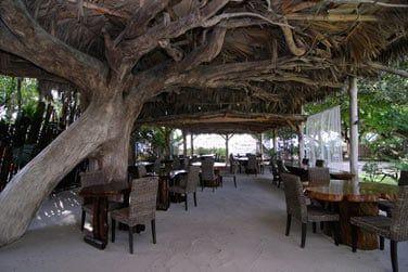 Au restaurant pieds dans le sable, vous pourrez vous détendre...