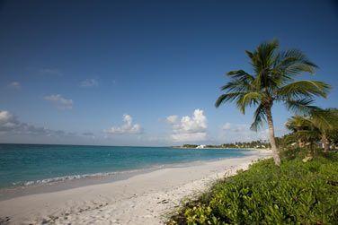Des plages absolument paradisiaques...