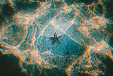 Une eau cristalline