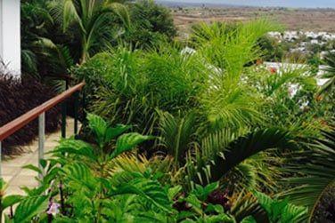Entièrement rénové, l'établissement se niche dans un agréable jardin, à flanc de colline