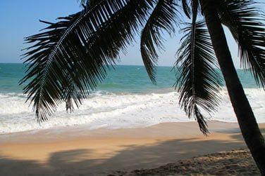 De retour sur la côte, vous découvrirez les plages de sable blond du Sri Lanka