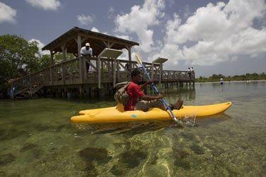 Les plus actifs et sportifs tenteront sans doute une sortie en kayak dans la mangrove