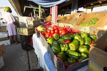Où vous pourrez craquer pour des objets d'artisanat ou de succulents fruits tropicaux !