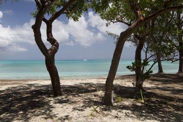 Profitez de votre séjour à Nassau - Paradise Island pour découvrir des plages paradisiaques