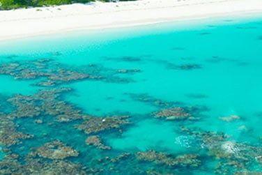L'île est le paradis des activités nautiques, de la pêche et de la plongée